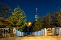 八幡山公園 アドベンチャーブリッジ