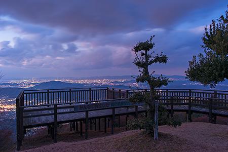雨の森公園 展望デッキの夜景