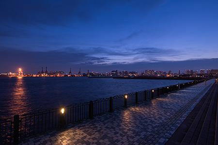 青海南ふ頭公園の夜景