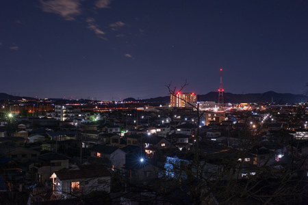 足利公園の夜景