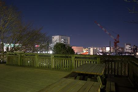 飛鳥山公園の夜景