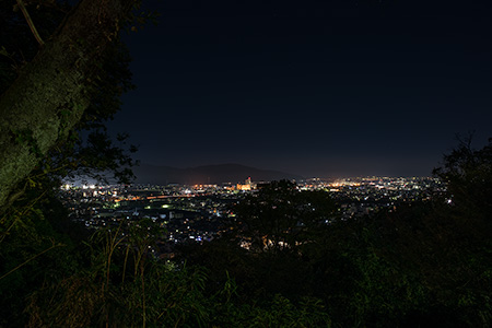 足羽山の夜景
