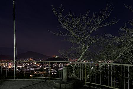 愛宕公園の夜景