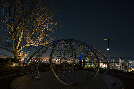 ビーナスブリッジの夜景