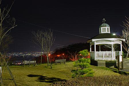 眉山 花と鳥の展望広場の夜景