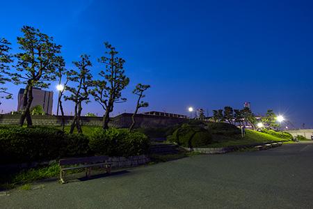 ちどり公園の夜景
