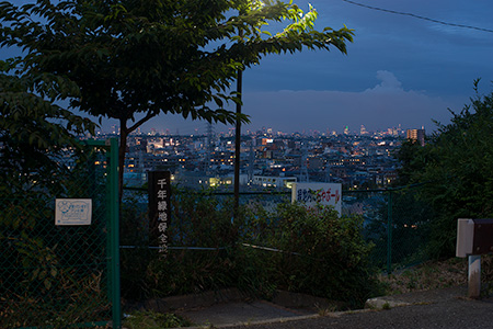 千年緑地保全地区の夜景