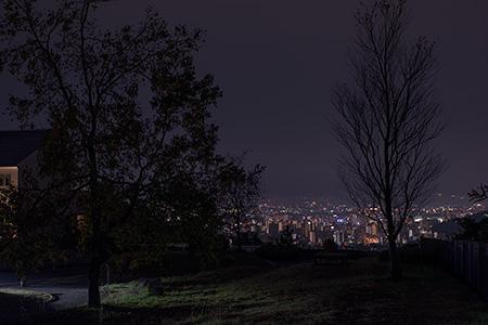 道後平ニュータウン パノラマパークの夜景