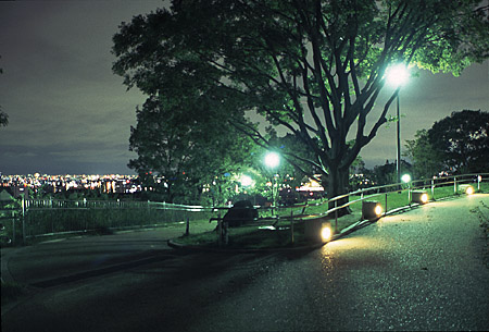東石切公園の夜景