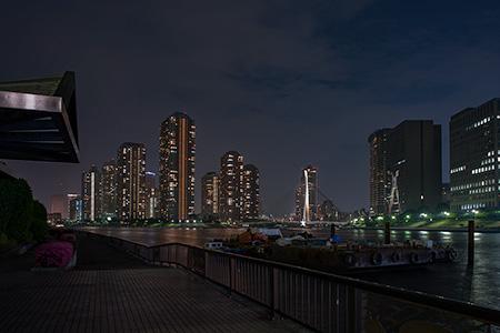 永代公園の夜景