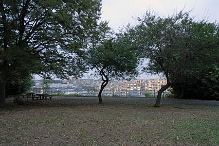 太尾見晴らしの丘公園の夜景