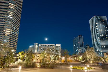 グランツリー武蔵小杉 屋上庭園の夜景