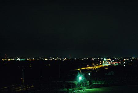 半田緑地公園の夜景
