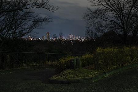 平和公園の夜景