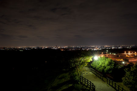 犬山ひばりヶ丘公園の夜景