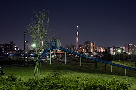 東立石緑地公園の夜景