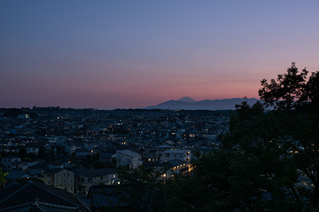 東本郷第一公園の夜景