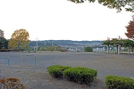 ひまわり公園の夜景