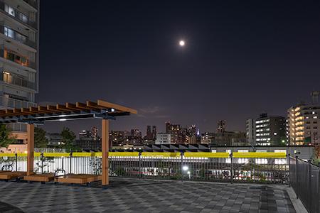 広町みらい公園の夜景