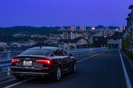 堀之内東山ふれあい東緑道の夜景