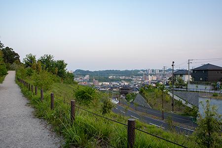 堀之内東山そよかぜの道の夜景