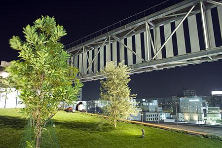 i-ビル 屋上庭園の夜景