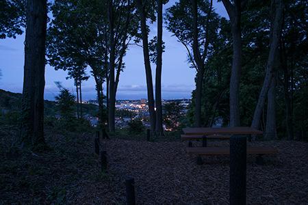 池辺市民の森の夜景