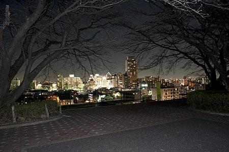 いろは坂さくら公園の夜景