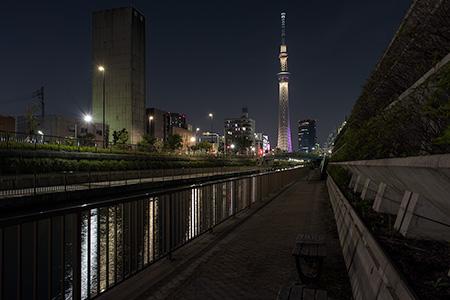 北十間川 遊歩道の夜景