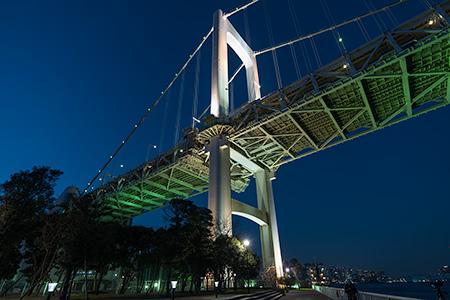 芝浦南ふ頭公園運動広場・かいがんぱ~くの夜景