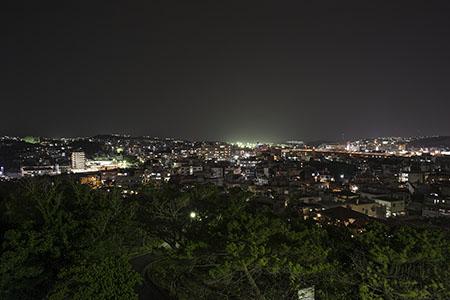 嘉数高台公園の夜景