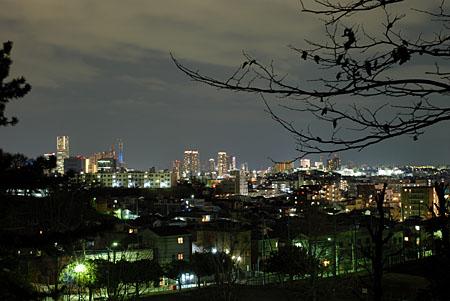 神之木公園の夜景