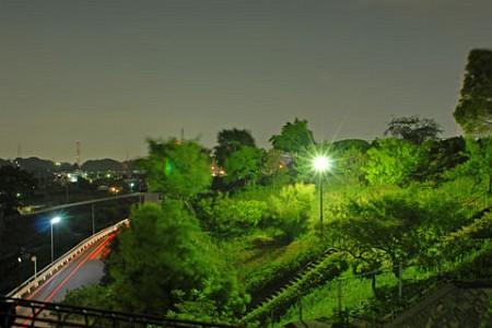 早渕かなりあ公園の夜景