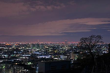 観音寺展望台の夜景