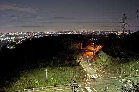 豊田市自然観察の森の夜景