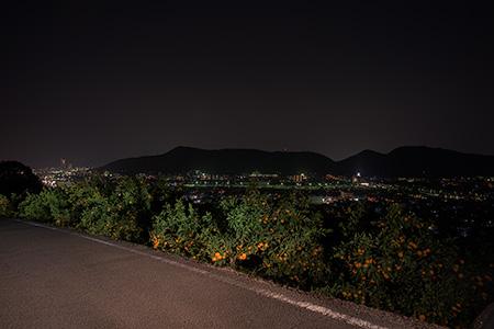 勝賀農免道路竣功記念碑の夜景