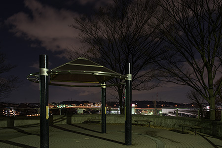 川上公園の夜景