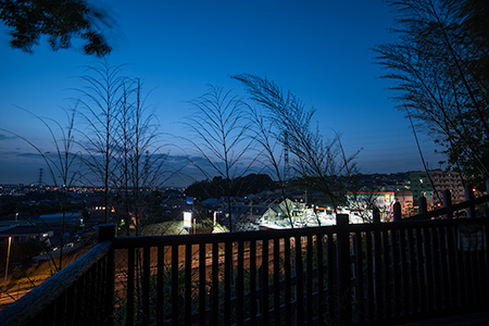 川和市民の森の夜景