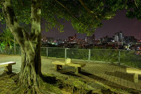 希望ヶ丘公園の夜景