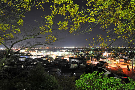 錦着山公園の夜景