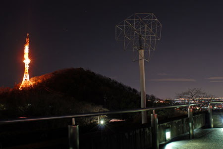 金華山展望公園の夜景