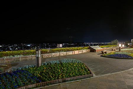 紀ノ川SAの夜景
