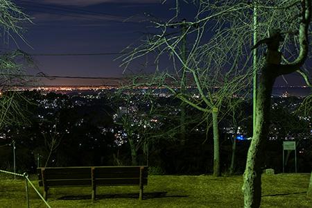 衣笠山公園の夜景