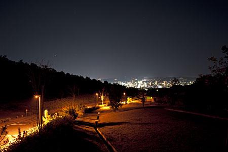 喜多緑地の夜景