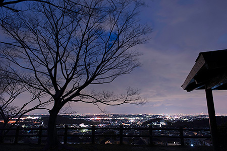清見台第一公園の夜景