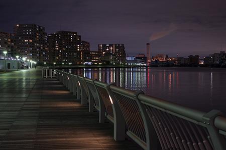 なぎさ公園の夜景