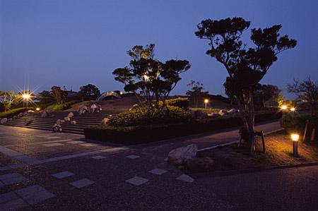 湘南国際村の夜景