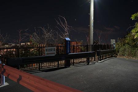 古沢こもれびの杜緑地の夜景