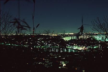 弘法松公園