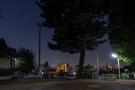 小山八幡神社の夜景